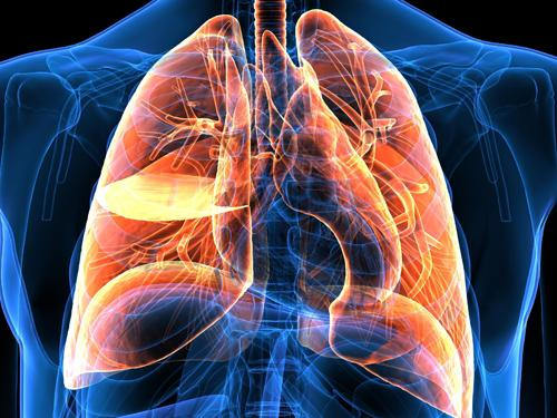 Lung Cancer - Emerging Role of Immunotherapy of Lung Cancer